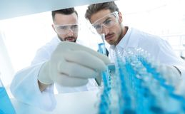 Scientist and assistant studying the solution in the tube Stock Photos