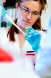 Scientist with automatic pipette Royalty Free Stock Images