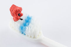 Scientist checking bacteria on the toothbrush Royalty Free Stock Photos