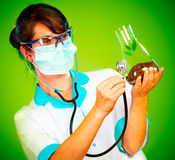 Scientist Checking Health Of A Life Stock Photos
