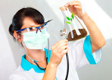 Scientist Checking Health Of A Life Royalty Free Stock Photo