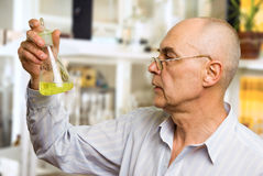 Scientist in chemical lab. Scientist in the chemical lab examines a flask with a substance Royalty Free Stock Photos