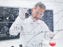 Scientist conducting experiment Royalty Free Stock Images