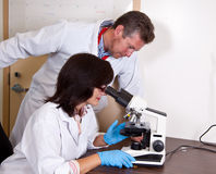 Scientist covorkers work with microscope Stock Images