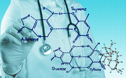 Scientist doctor hand touch virtual molecular structure in the l Stock Photo