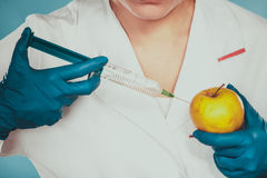 Scientist doctor injecting apple. GM Food. Stock Photo
