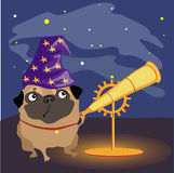Scientist dog pug watching the stars Royalty Free Stock Photos