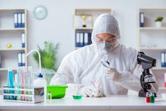 The scientist doing animal experiment in lab with rabbit Stock Photo