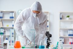 The scientist doing animal experiment in lab with rabbit Royalty Free Stock Photography