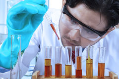 Scientist doing chemical test 1. Scientist doing chemical test in modern laboratory Stock Image