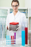 Scientist before doing experiment Stock Photography