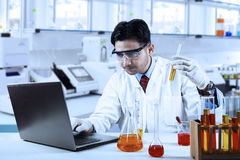 Scientist doing research in laboratory. Scientist doing research with chemical fluid while typing on laptop computer in laboratory Royalty Free Stock Image