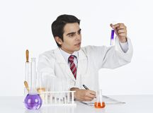 Scientist doing scientific experiment in a laboratory Royalty Free Stock Photography