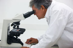 Scientist doing technical and chemical analysis of corn and soybean Stock Photo