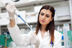 Scientist doing a test in a laboratory Royalty Free Stock Images