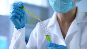 Scientist dripping yellow liquid in lab tube and looking at reaction, experiment. Stock photo royalty free stock photography