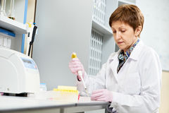 Scientist with Dropper at laboratory Stock Photography