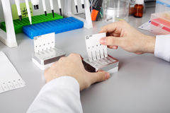 Scientist with dropper working  at the laboratory Stock Photos