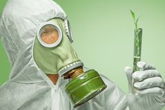 Scientist examines green plant Royalty Free Stock Image