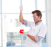Scientist examinig a test-tube Stock Image