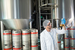 Scientist examining beer in beaker. At warehouse Stock Image