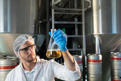 Scientist examining beer at factory. Scientist examining beer in beaker at factory Stock Photography