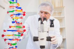Scientist examining dna helix and looking in microscope. In the laboratory stock photography