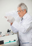 Scientist Examining Microplate Royalty Free Stock Photos