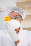 Scientist examining petri dish with orange fluid inside Stock Photo