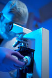 Scientist examining sample with microscope Stock Photography