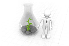 Scientist examining small  plants Royalty Free Stock Images