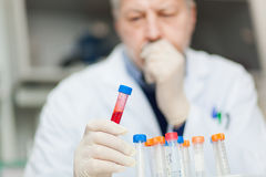 Scientist examining a test tube Stock Photos