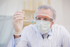 Scientist examining tube Royalty Free Stock Images