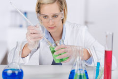 Scientist Experimenting At Desk In Laboratory. Young female scientist experimenting at desk in laboratory Royalty Free Stock Image