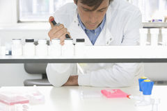 Scientist Experimenting In Laboratory royalty free stock photo