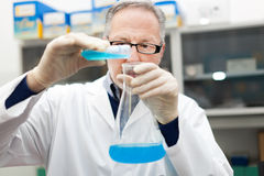 Scientist filling an Erlenmeyer flask Stock Photography