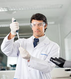 Scientist Filling Solution Into Test Tube Royalty Free Stock Photography