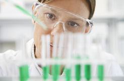 Scientist Filling Test Tubes With Pipette Stock Images