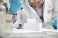 Scientist Filling Test Tubes With Pipette In Laboratory Royalty Free Stock Photos