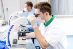 Scientist and forensic analyser working with microscope Royalty Free Stock Photo