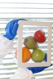 Scientist with fruits and vegetables in container Royalty Free Stock Image