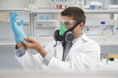 Scientist In Gas Mask And Putting On Rubber Glove Royalty Free Stock Photo
