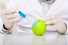 Scientist genetically modifying fruits and vegetables in the laboratory Stock Photography