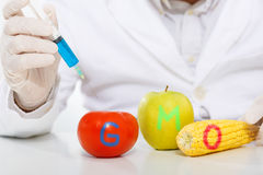 Scientist genetically modifying fruits and vegetables in the laboratory Stock Image