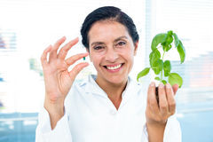 Scientist holding basil plant and pill Stock Image