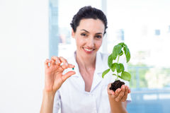 Scientist holding basil plant and pill Stock Photo
