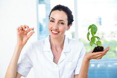 Scientist holding basil plant and pill Stock Images