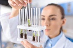 Scientist holding laboratory tubes Stock Photography