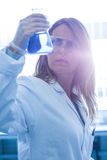 Scientist holding up beaker of chemical Royalty Free Stock Image