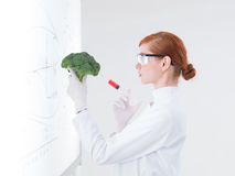 Scientist injecting a broccoli Royalty Free Stock Photos
